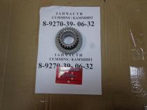 Шестерня 5 передачи КПП (22 зуб) Baw Fenix 1044 Евро 2 1701320-90F