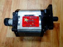 Насос подъема кузова с клапаном Shaanxi CBD-F100