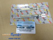 Ремкомплект тормозного механизма Renault Sandero 203мм  7701208856